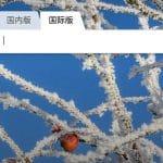 """محرك بحث شركة مايكروسوفت """"Bing"""" تم حجبه في الصين"""